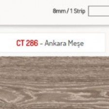 Ankara Meşe
