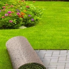 Bahçe Dekoratif Çim Halı