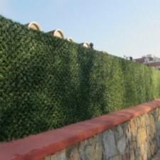 Duvar üstü Çim