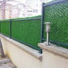 Duvar çim