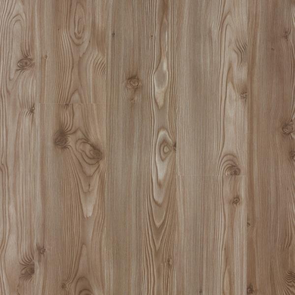 Floorpan Sun Floor